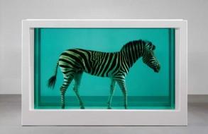damien-hirst-zebra